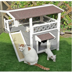 Outdoor Cat Wooden House
