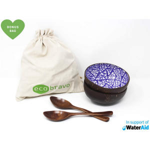 Eco Bravo Coconut Bowl and Spoon