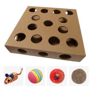 Indoor Cat Toy Puzzle Box