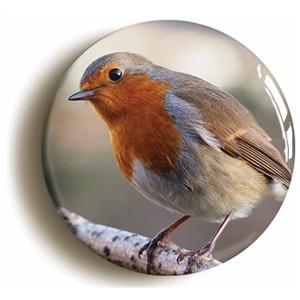 Robin Bird Watching Badge Button Pin