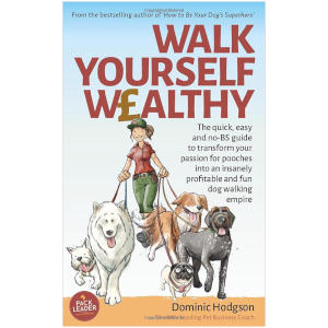 Walk Yourself Wealthy - Dominic Hodgson