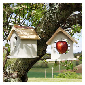 Bird Nesting Box & Apple Feeder Set
