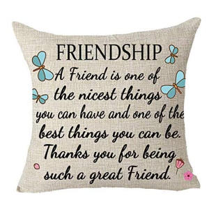 Friendship Quote Cushion