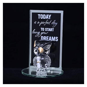 Owl Graduation Keepsake Plaque
