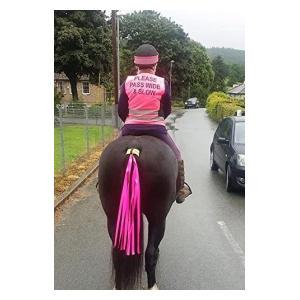 Hi Viz Horse Tail Streamer