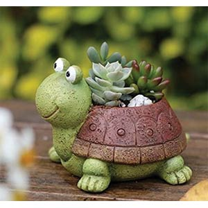 Tortoise Plant Pot