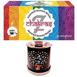 7 Chakra Incense Bricks