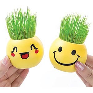 Cute Expression Potted Plants