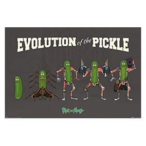 Evolution of The Pickle Maxi Poster