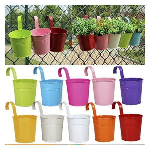 10 Iron Hanging Flower Pots