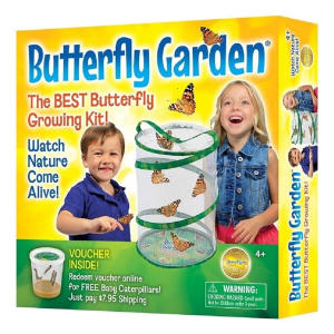 Insect Lure Butterfly Garden