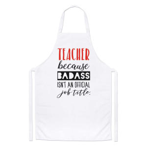 Novelty Teacher Apron
