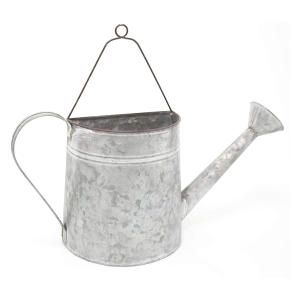 Vintage Style Watering Pot