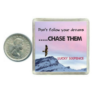 Lucky Sixpence Coin Gift