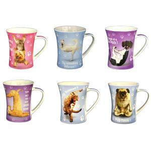Set of 6 Yoga Pet Mugs