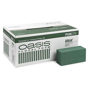 1 X Box of Oasis Foam