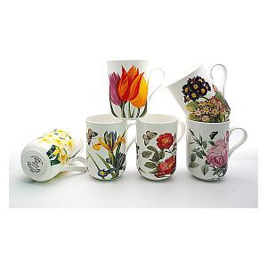 6 Assorted Flower Mugs
