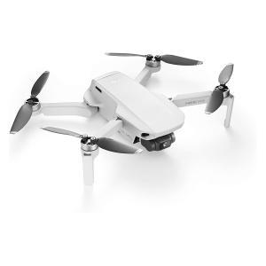 DJI Mavic Mini Ultralight and Portable Drone