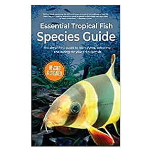 Essential Tropical Fish: Species Guide
