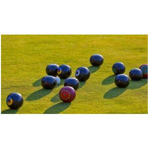 Lawn Bowls 1000 Piece Puzzle