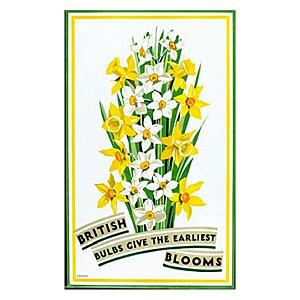 Vintage British Florist Poster