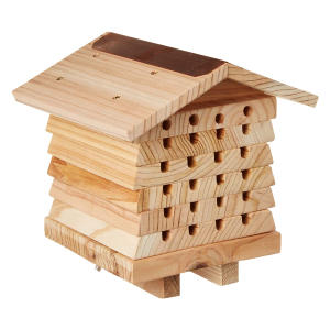 World Solitary Bee Hive