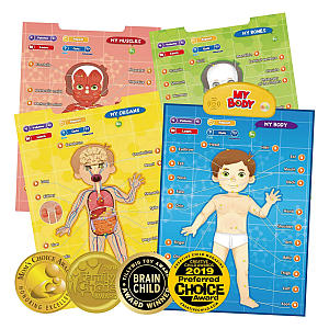 Interactive Educational Human Anatomy Talking Game