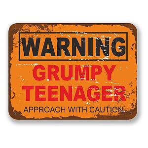 Novelty Grumpy Teenager Sign