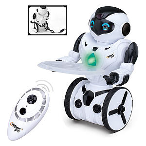 RC Remote Control Robot Toy