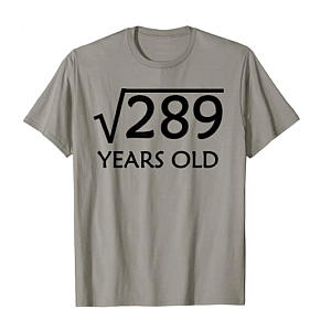 Square Root of 289 Novelty T Shirt