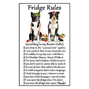 Border Collie Funny Fridge Rules Magnet