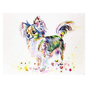 Chihuahua Diamond Watercolour By Numbers Kit