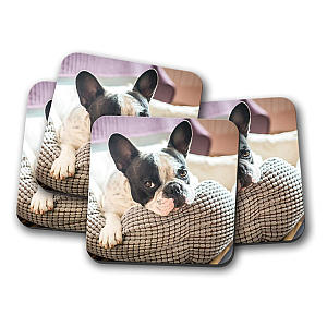 French Bulldog Coaster Set