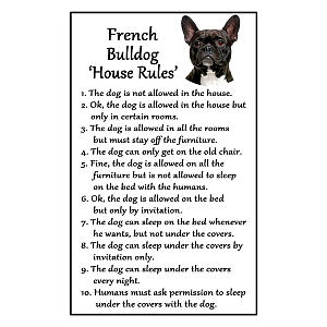 French Bulldog Rules Funny Fridge Magnet