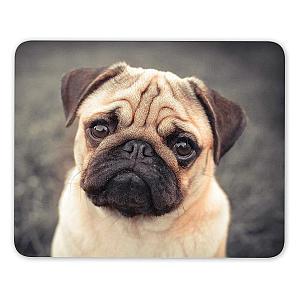Pug Dog Mouse Mat Pad
