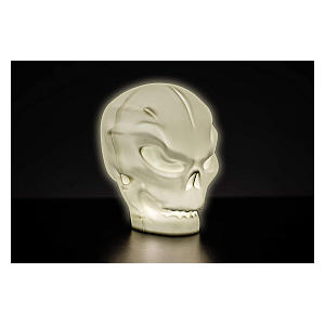 Skull Light Decoration