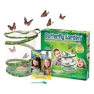 30cm Butterfly Garden