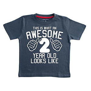 Awesome 2 Year Old Boy's T Shirt