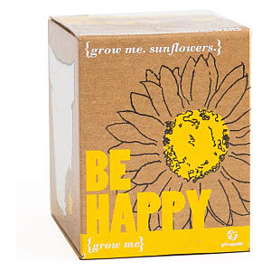 Boxed Sunflower Seeds