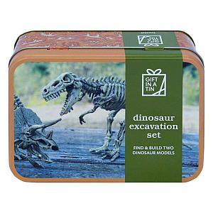 Dinosaur Excavation Gift Set