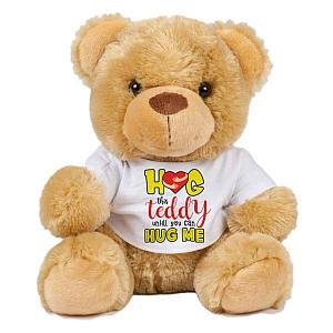 Hug This Teddy Bear