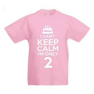 I'm Only 2 Girls T Shirt