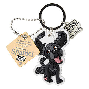 Key Chain with Keyring