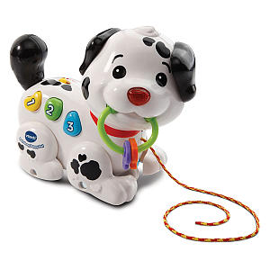 Pull Along Puppy Pal Toy