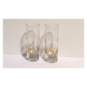 Set of 2 Gold Foil Shot Glasses
