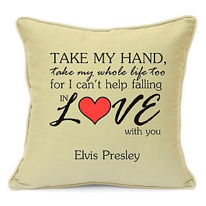 Take My Hand Lyrics Pillow