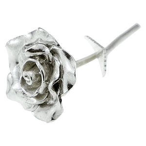 Tin Anniversary 10 Year Everlasting Rose