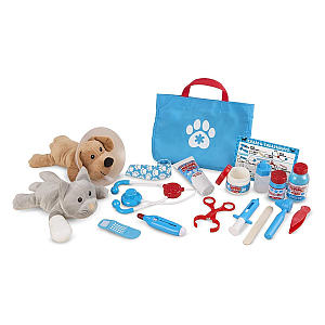 Vet Pet Play Set