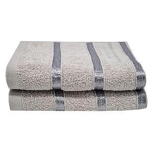 2 Piece Egyptian Cotton Silver Towel Set
