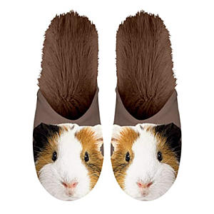 Guinea Pig Slippers